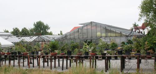Freilandbereich des Bonsai-Centrum-München